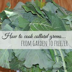How to Cook Collard