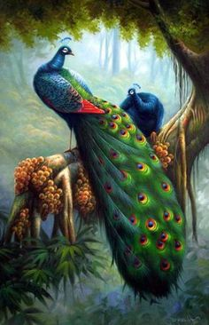 Райские птицы - Схемы вышивки - Al151984 - Авторы - Портал «Вышивка крестом»