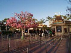 Disneyland ticket booths, February 2015