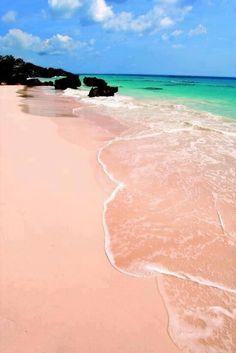 Pink Sand Beach, Warwick, Bermuda <3
