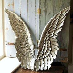 Great angel wings