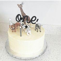 Black and white animal cake