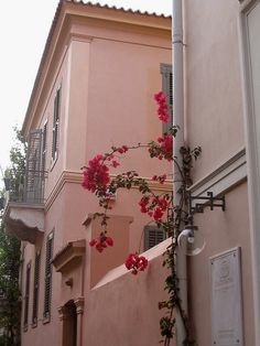 Old Athens, Thission