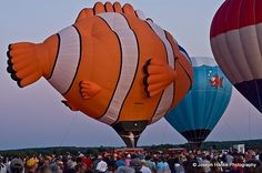 The Wausau Airport had its Hot Air Balloon Rally this weekend. Description from city-data.com. I searched for this on bing.com/images