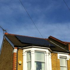 Solar panels will attract Feral pigeons