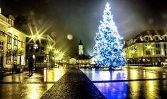 fot. Łukasz Popławski #christmastree #street
