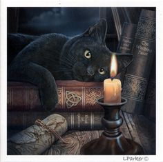 """Witching Hour Greeting Card - Sprawled atop a pile of books, this black cat is captivated by the candle's flickering flame. Based on artwork by renowned fantasy artist Lisa Parker. Cards measure 5"""" square, and are blank on the inside so you can add your own message. Sold individually, with envelope.<BR>"""