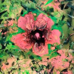 Mixed Media Artists, Hibiscus, Abstract, Artwork, Summary, Work Of Art, Auguste Rodin Artwork, Artworks, Illustrators
