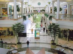 Indoor Plants can be used as useful visual aids at shopping centers and retail spaces.