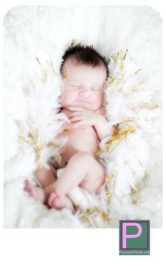 baby feather