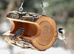 Unique Bird Feeder made from a hollowed out log.   Putting this on my 'To Do' list.