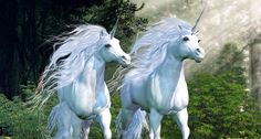 Creationists: To dismiss unicorns found in the Bible as mythical animals 'is to demean God's Word'