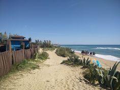 Los Caños de Meca-Zahora (Barbate, Cádiz) - Caballos por la orilla de la playa de Zahora en un día espectacular