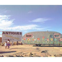 in the desert.