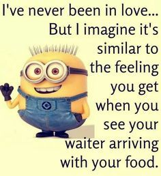Minions - Never been in love.