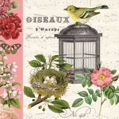 Vintage Bird cage with flowers and nest, set of 3 decoupage paper napkins, cm Decoupage Vintage, Paper Napkins For Decoupage, Vintage Paper, Vintage Birds, Vintage Prints, Decorative Paper Napkins, Bird In A Cage, Boarders And Frames, Napkins Set