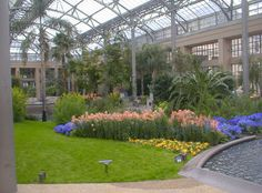 Another inside view of the Conservatory at Longwood Gardens