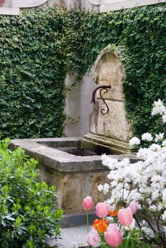 Stone fountain with ivy