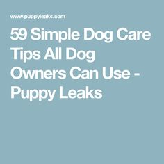 59 Simple Dog Care Tips All Dog Owners Can Use - Puppy Leaks