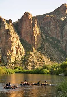Tubing down the Salt River, AZ... Did this a few years ago, took 4 hours and had a bunch of fun.