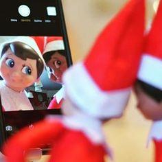 S•elf•ie with cinnamon  #chippytakeover #chippysnow #elfontheshelf 4 more days #scoutelfreturnweek .....................