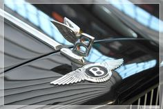 All sizes | 1984 - 1995 Bentley Continental (02) | Flickr - Photo Sharing!
