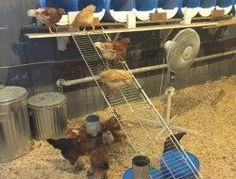 Nesting Box Ideas