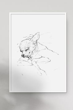 ♥ Sleeping chihuahua, pencil on paper ♥ Art reproduction of our original hand drawing ♥ The artwork was scanned and printed with high-quality inks on textured art paper#fluorama#fluoramaposters#chihuahua#art