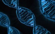 Gli OGM sono una calamità in grado di modificare il DNA #ogm #dna #umanità #monsanto