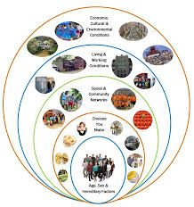 youth and social determinants of health - Google Search Social Determinants Of Health, Health And Wellbeing, Public Health, Purpose, Youth, Pdf, Community, Google Search, Books