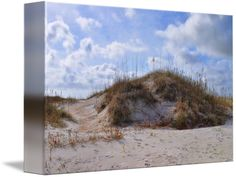 """""""Winter Dunes"""" by Paulette Wright, Raleigh // Wrightsville Beach, North Carolina // Imagekind.com -- Buy stunning fine art prints, framed prints and canvas prints directly from independent working artists and photographers."""
