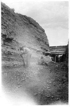 Fossil Quarry ~ Florissant Colorado ~ 1931