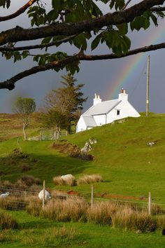 West Highland croft house under a rainbow in May. [Photo by Jenny Chapman.]