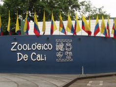 Zoologico de Cali in Cali, Colombia is a fantastic zoo with gorgeous foliage and interesting native animals. It's a definite must see!