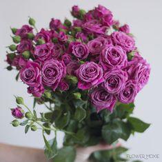 purple spray roses, purple bouquet, flower moxie Diy Your Wedding, Diy Wedding Flowers, Floral Wedding, Standard Roses, Spray Roses, Cream Roses, Flowers Online, Types Of Flowers, Flower Arrangements