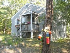Spacious Home, Knotted Pine Cathedral... - HomeAway South Wellfleet