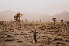 joshua-tree-engagement