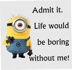 27 Funny Minion Quotes