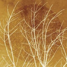 Heidi Coleman 'Branches ' Gallery-wrapped Canvas Art