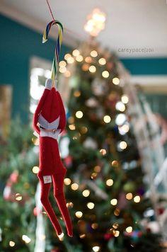 Tonnen von Easy Elf im Regal Ideen!- Zip Line Elf on the Shelf von Carey Pace … – Bavece A Shelf, Shelves, Shelf Elf, Elf On Shelf Funny, Awesome Elf On The Shelf Ideas, Elf Auf Dem Regal, Elf Magic, Elf On The Self, Naughty Elf