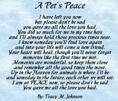 Doge Fur Babies Rainbow Bridge Dog Loss Poem Of