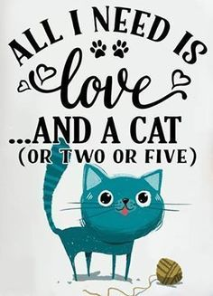Quotes about Cats - All I Need is Love... and a Cat (or Two or Five) http://www.traveling-cats.com PurritoCat