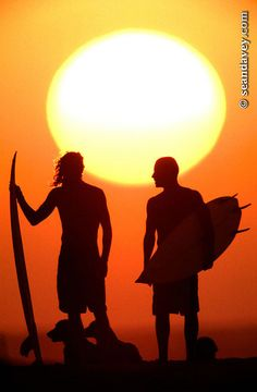 silhouetted surfers