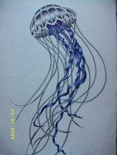How to draw a realistic jellyfish - photo#18