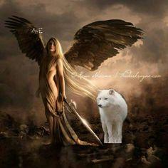 Bildresultat för angel and wolf