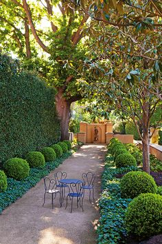 English Boxwood spheres line the path leading to a bronze statue.