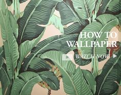 1000 images about beverly hills hotel wallpaper on pinterest beverly hills banana leaves and. Black Bedroom Furniture Sets. Home Design Ideas