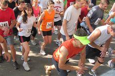Run a 10k race