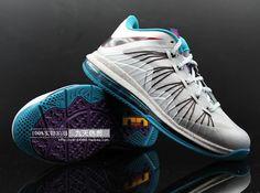 Akron Aeros Nike LeBron 10 Low