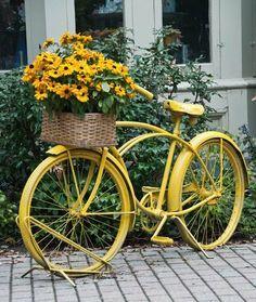 Yellow Flowers and Bike